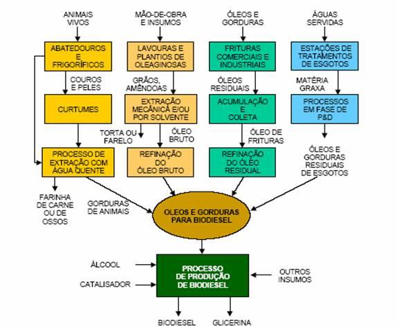 do biodiesel, considerandoos grupos ou fontes de matérias-primas